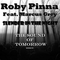 Roby Pinna Slender In The Night