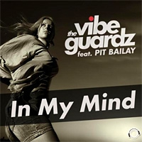 The Vibeguardz ft. Pit Bailay In My Mind