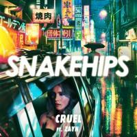 Snakehips Feat. Zayn Cruel
