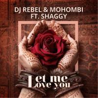 DJ Rebel & Mohombi ft. Shaggy Let Me Love You