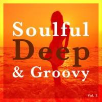 Va Soulful Deep & Groovy Vol 3