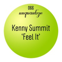 Kenny Summit Feel It