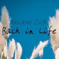 Hauber Zsolt Back In Life