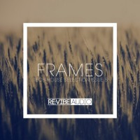 Va Frames Issue 5