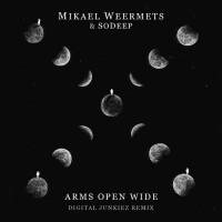 Mikael Weermets feat. Sodeep Arms Open Wide (Digital Junkiez Remix)