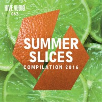 Va Summer Slices 2016