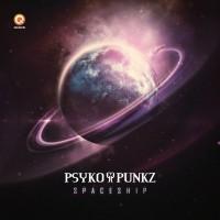 Psyko Punkz Spaceship