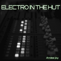 Andee Jay Electro In The Hut