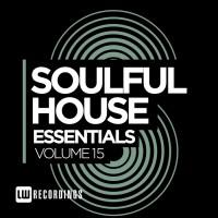 Va Soulful House Essentials Vol 15