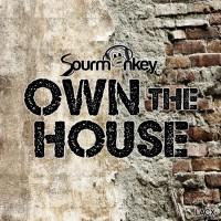 Dj Sourmonkey Own The House