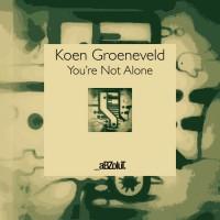 Koen Groeneveld You're Not Alone