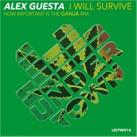 Alex Guesta I Will Survive