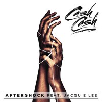 Cash Cash Ft Jacquie Lee Aftershock