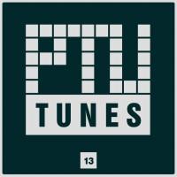 Va Ptu Tunes Vol 13