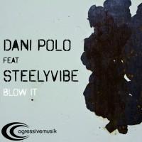 Dani Polo Feat Steelyvibe Blow It