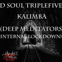 D Soul Triplefive Kalimba