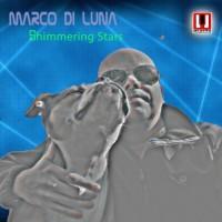 Marco Di Luna Shimmering Stars