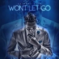 Anthony Ryan Won\'t Let Go