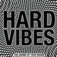 Va Hard Vibes