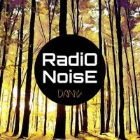Danyr Radio Noise