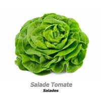 Salade Tomate Salades