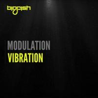 Modulation Vibration