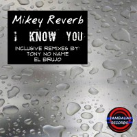 Mikey Reverb I Know You