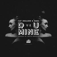 Cat Dealers & Rawa R U Mine