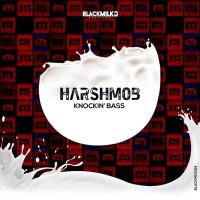 Harshmob Knockin\' Bass