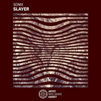 Son!x Slayer