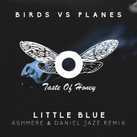 Birds Vs Planes Little Blue