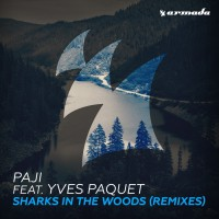 Paji Feat Yves Paquet Sharks In The Woods