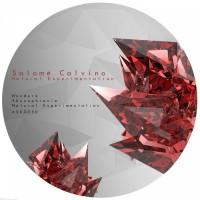 Salome Calvino Natural Experimentation