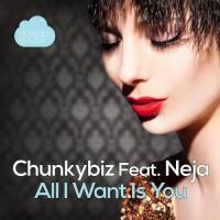 Chunkybiz Feat. Neja All I Want Is You