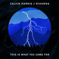 Calvin Harris feat. Rihanna This Is What You Came For