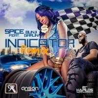 Spice Feat Bunji Garlin Indicator