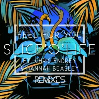 Slice\'o\'life Feat Chris Endrey, Hannah Beasley Feel For You (Remixes)