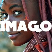Imago Shrooms
