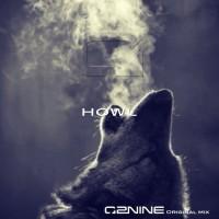 Zerotonine Howl