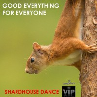 Shardhouse Dance Good Everything For Everyone