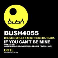 Drumcomplex & Misstress Barbara If You Can\'t Be Mine