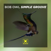Bob Owl Simple Groove