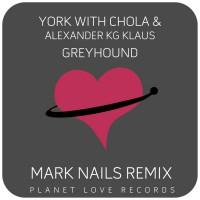 York With Chola & Alexander Kg Klaus Greyhound