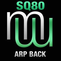 Sq80 Arp Back