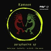 Kameen Aerophonism