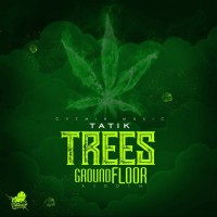 Tatik Trees