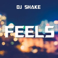 Dj Shake Feels