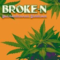 Broke-n Recreational Riddimz