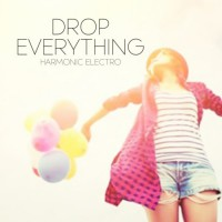 Harmonic Electro Drop Everything