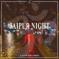 Andrea D\'amato Jaipur Night